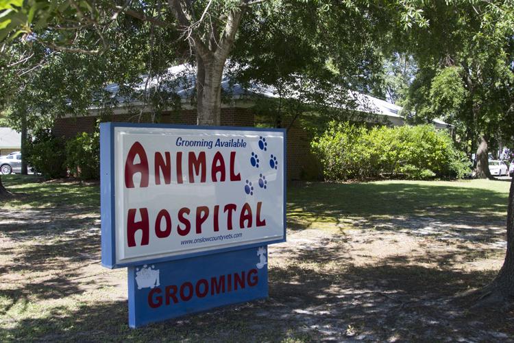 Animal Hospital of Onslow County | Jacksonville, NC 28546 > Home